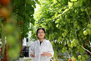 Student examines tomatoes at World Horti Center